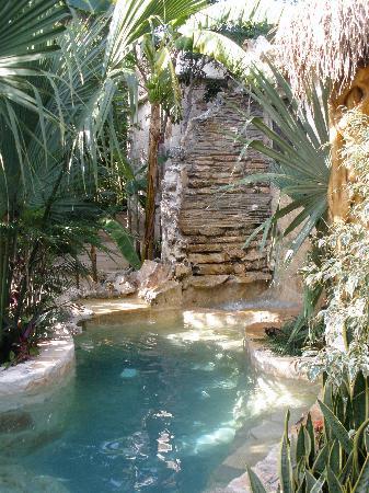 La Selva Mariposa: Dipping pool