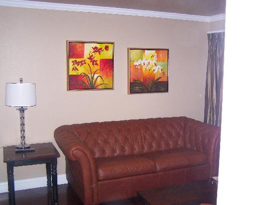 Oasis Suites Hotel照片