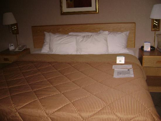 Quality Inn: Bed again