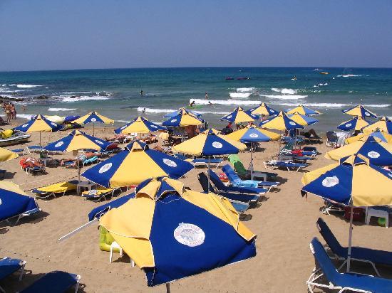 Latania: Beachcomber area of the beach