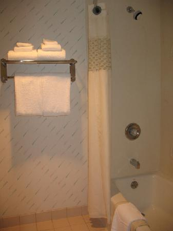 Hampton Inn Spokane: the bathroom