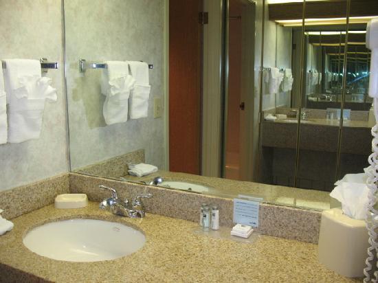 Hampton Inn by Hilton Spokane Airport : another one of the bathroom