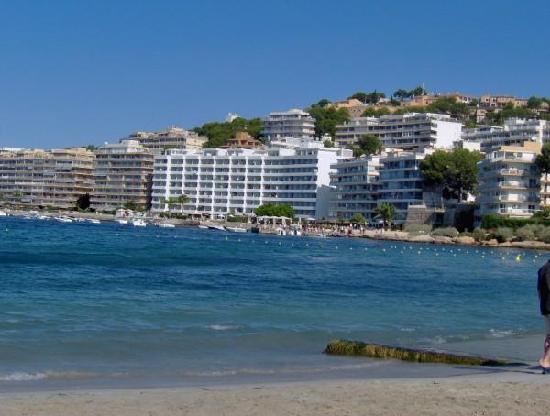 Viva Rey Don Jaime & Spa: Beach