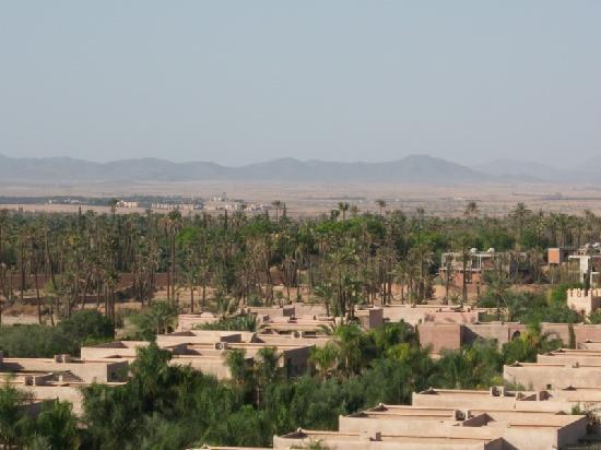 Club Med Marrakech La Palmeraie: photo vue du club