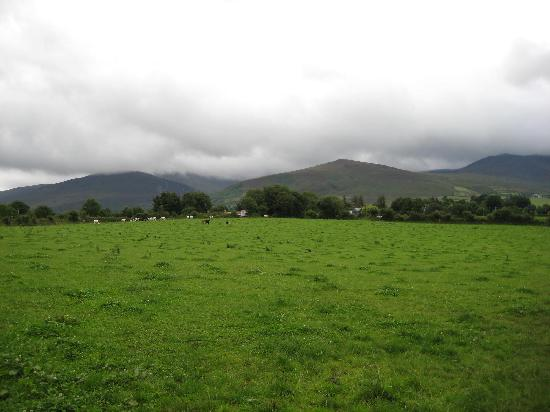 Pastures near Beaufort House and Golf course