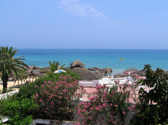 """The Orangers Beach Resort & Bungalows : vue de la chambre """"supérieure"""""""