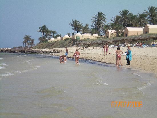 Club Oasis Marine: la plage