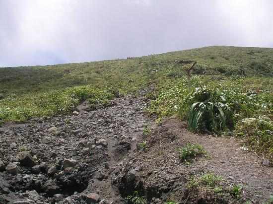 La Soufriere Cross Country Trail: Last 1/2 mile; the little specks at the top are people...