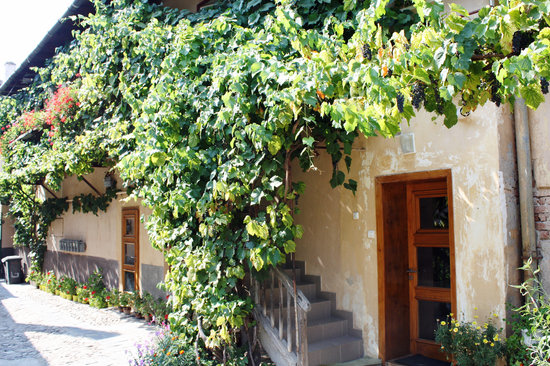 Secret Transylvania Guest House: The apartment in Sibiu Centre