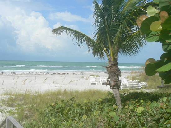 Longboat Key, Floryda: Walk for miles!