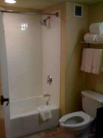 Holiday Inn Express Lawrence / Andover: Bathroom