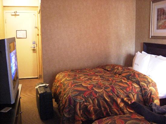 DoubleTree by Hilton Hotel & Suites Pittsburgh Downtown: Partial room view