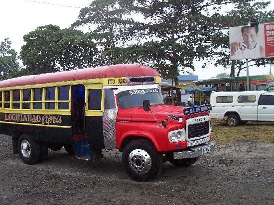 Stevenson's at Manase: local bus