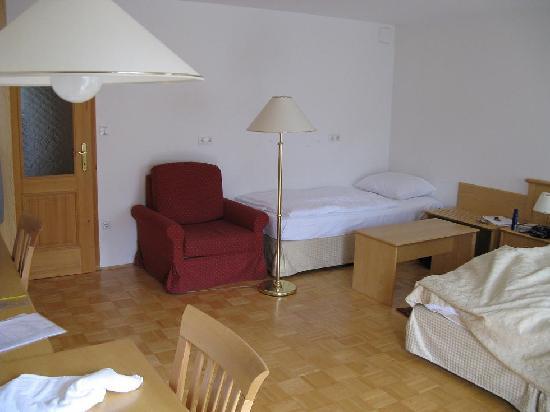 Hotel Bohinj: My room