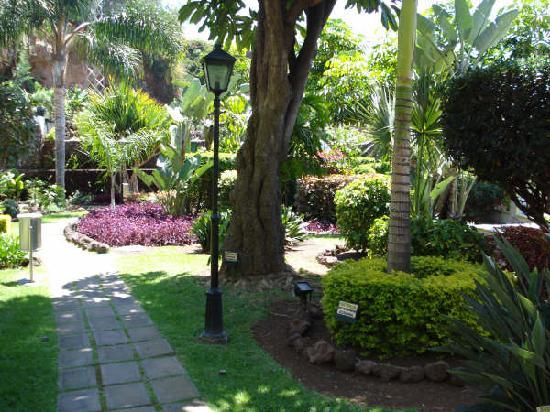 Blue Sea Costa Jardin & Spa: esta es una de las vistas de los jardines