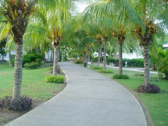 Varadero, Cuba: Garden walk