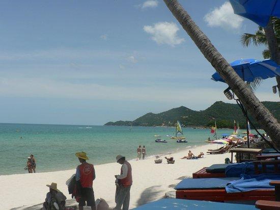 B2@Samui Beach Resort: Beach at Chaweng Resort