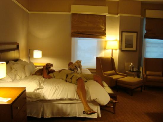 The Westin Columbus: Our Room