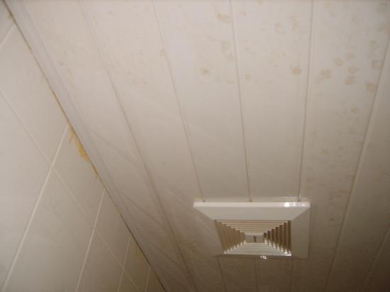 Beijing Sentury Apartment Hotel: Mold on Ceiling of bathroom
