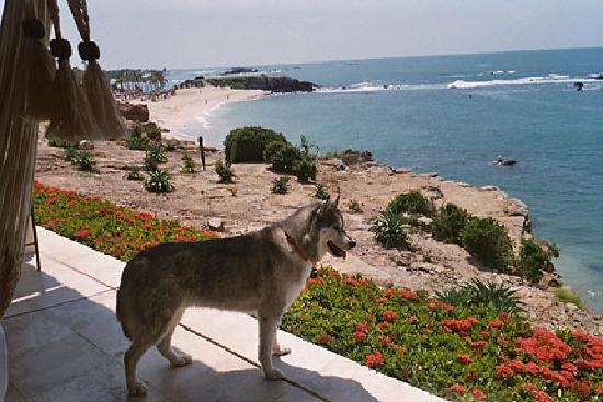 Four Seasons Resort Punta Mita: sea staring Lukey