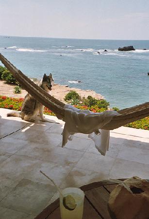 Four Seasons Resort Punta Mita: smiley Lukey