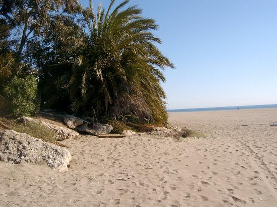 Hotel Best Indalo: beautifull beach at mojacar