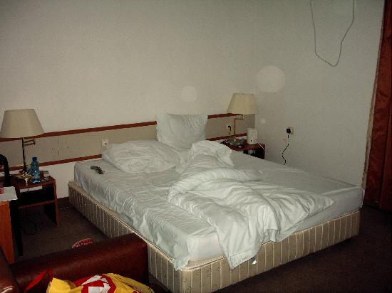 Pleven, Bulgaria: One of our rooms