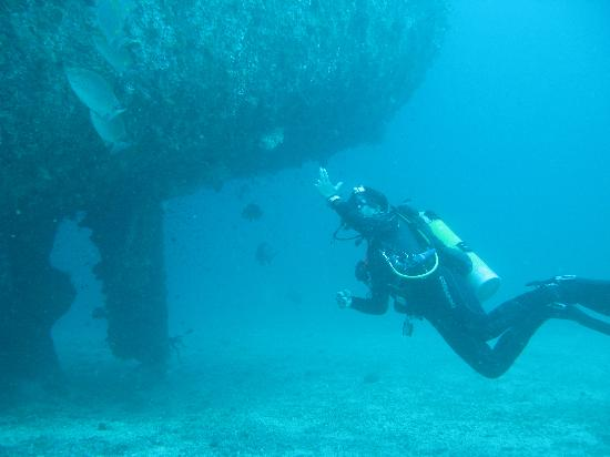 La Laguna Beach Club & Dive Centre: Shipwreck