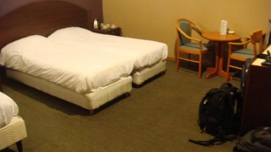 Maison Du Dragon : Spacious room at the Dragon