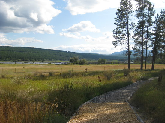 Elizabeth Lake Lodge: bird sanctuary