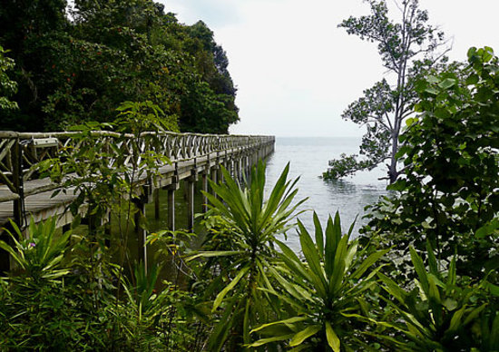 Batam, Indonésie : from Nongsa, the boardwalk to Turi Resort