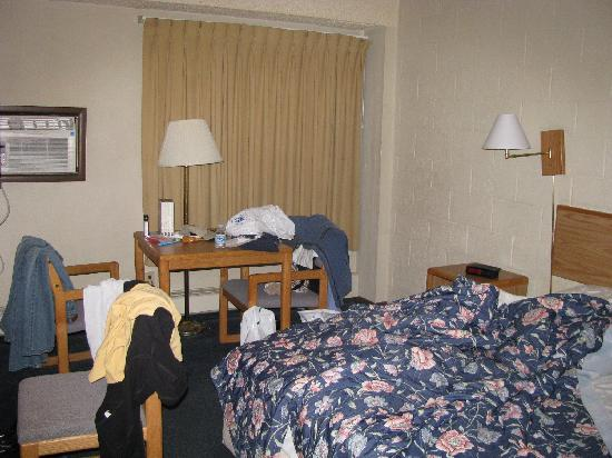 Aero Inn: Overall room