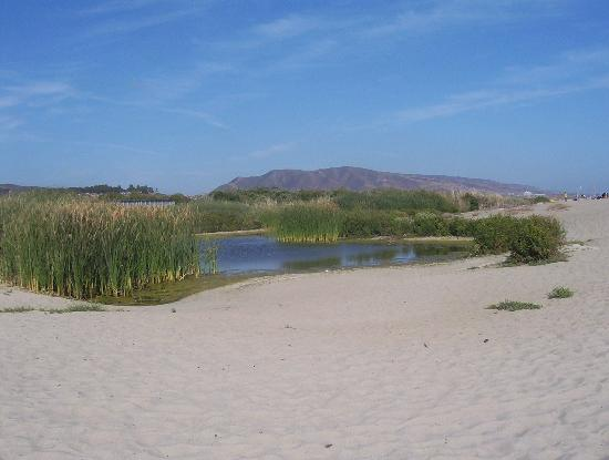 San Mateo Campground: Trestles Beach, Lagoon (the mouth of San Mateo Creek at the ocean)