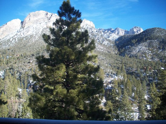 Mt. Charleston Lodge: Another view from Balcony of cabin #16