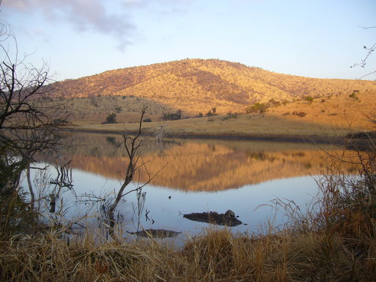 Pilanesberg National Park, Güney Afrika: Waterhole -Pilansberg National Park SA.