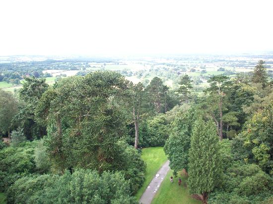 Hawkstone Park Hotel: View from the top of the monument