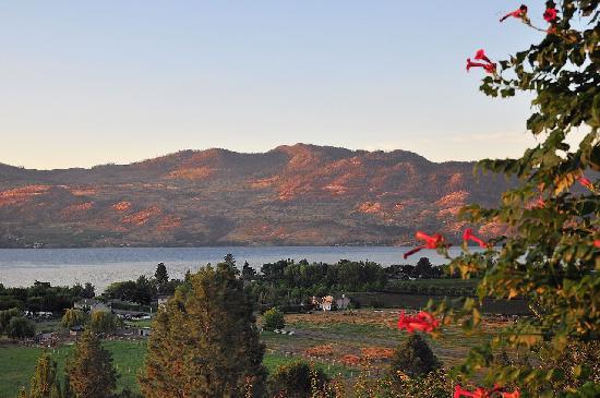 Lake Okanagan: View of Okanagan Lake from Apple Blossom B&B