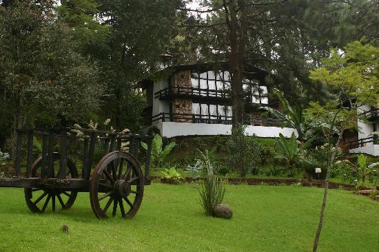 Foto de monteverde hotel de caba as mazamitla our cabin for Cabine in montagne verdi del vermont