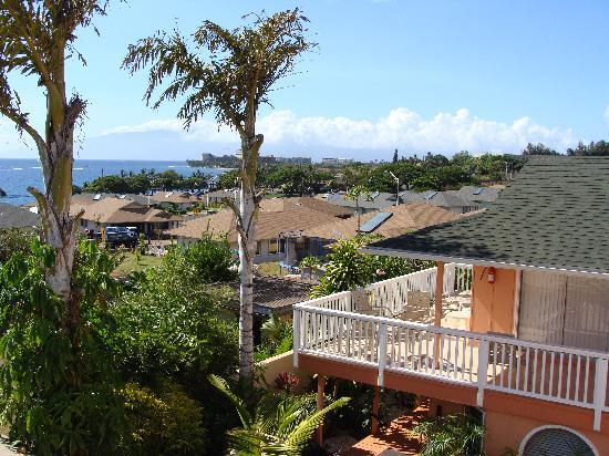 Maui Garden Oasis : Garden Gate - view from deck