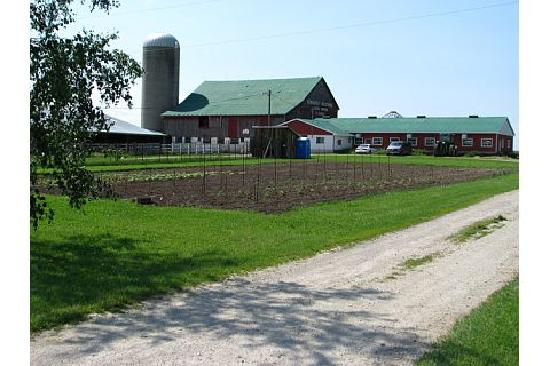 Edencrest Farm B&B: Edencrest Farm