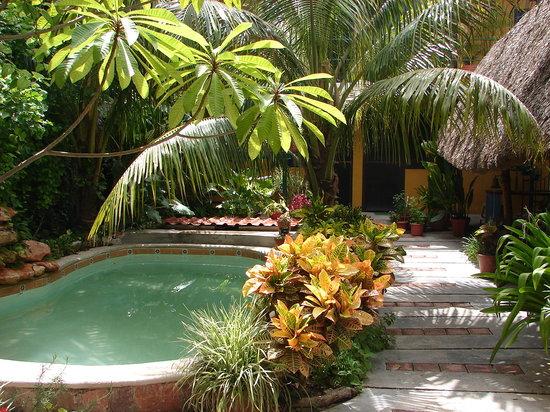 Casa Ana B & B: Small pool