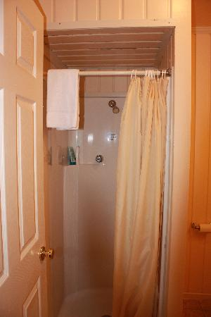 The Van Gilder Hotel: Shower stall