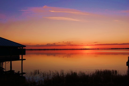 Taken on 18 December 2007, Lake Dora, Mount Dora, Florida