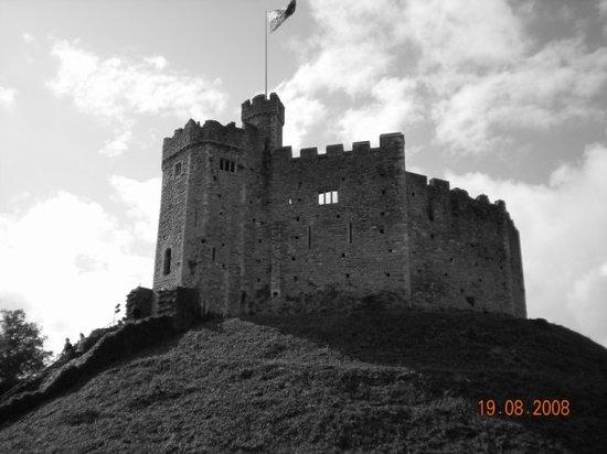 Cardiff Castle : Castle