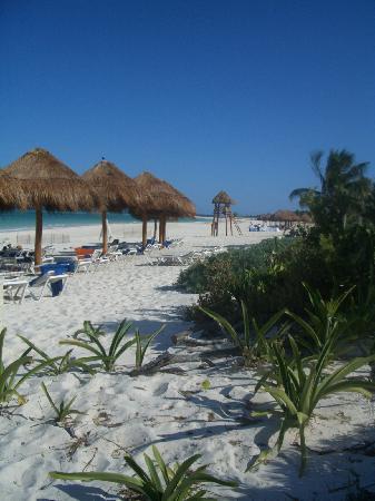 Secrets Maroma Beach Riviera Cancun : Beach and palapas