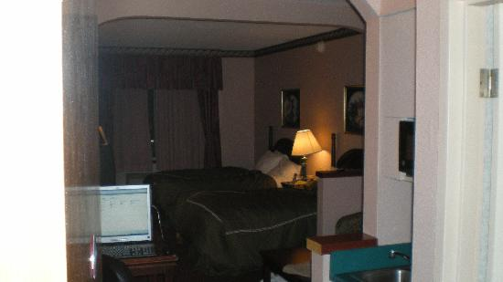 Comfort Suites Inn at Ridgewood Farm: view from the door, is this really a suite?