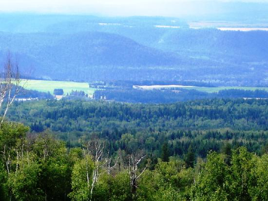 Sandman Hotel Quesnel: One of the views from Hill Forest Service Road