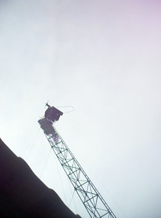 Jungle Bungy Jump: Watch that first step!