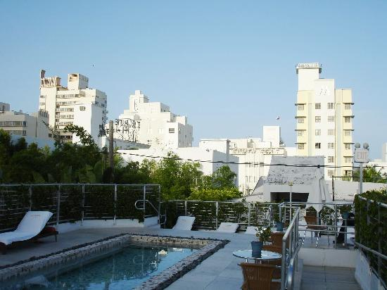 Sanctuary Rooftop Pool Picture Of