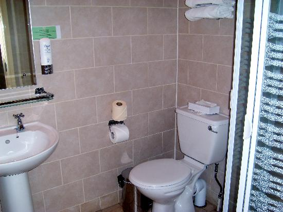 Nenagh, İrlanda: Ensuite in double bedroom